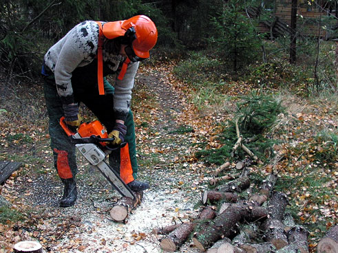 Me and me chainsaw